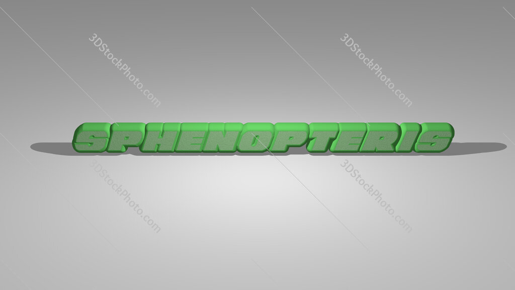 Sphenopteris