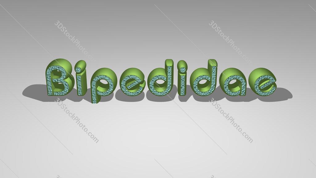 Bipedidae