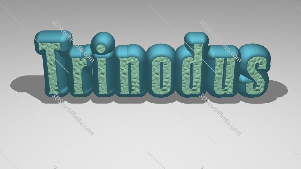 Trinodus