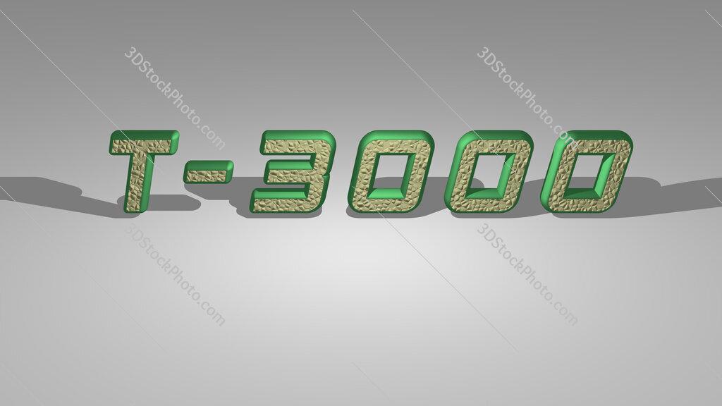 T 3000