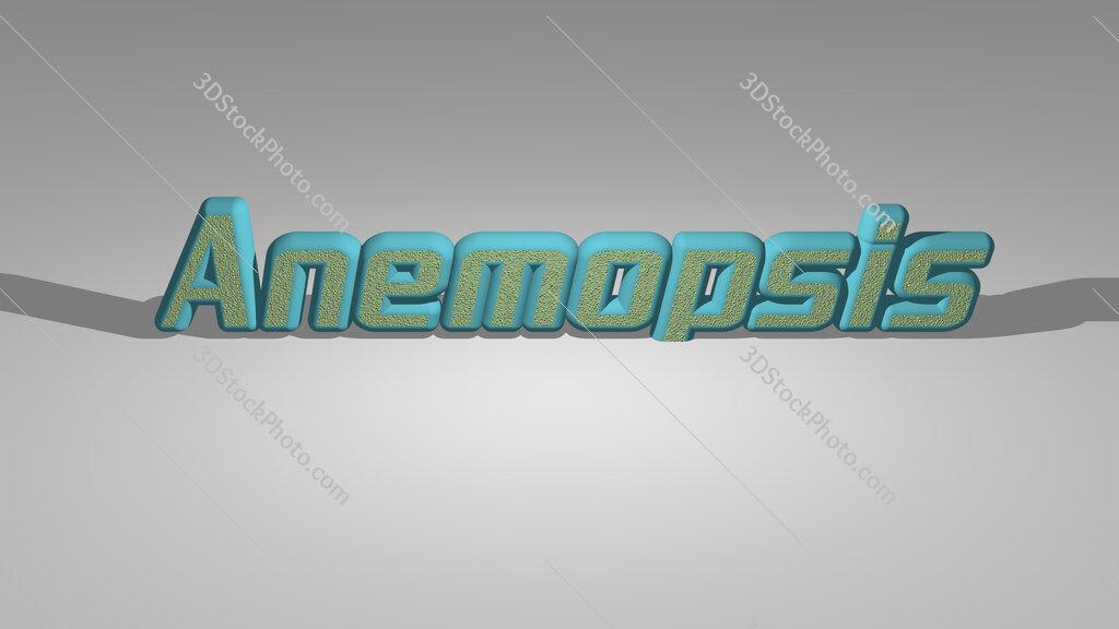 Anemopsis