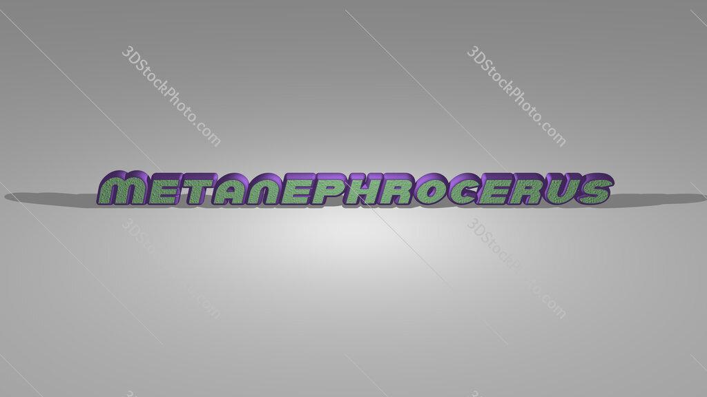 Metanephrocerus