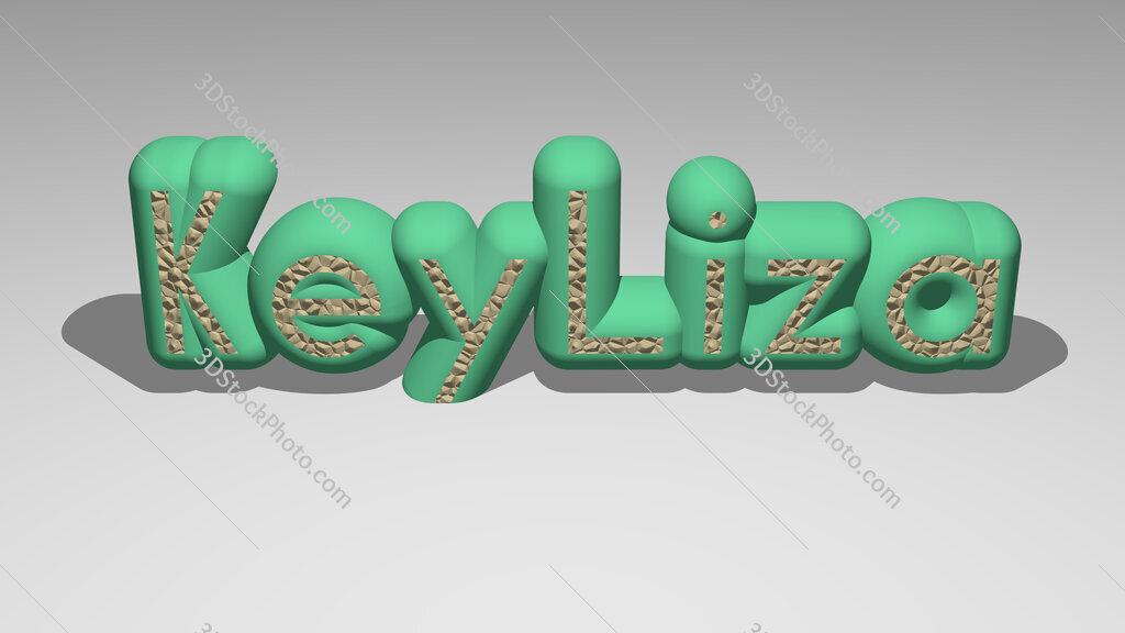 KeyLiza
