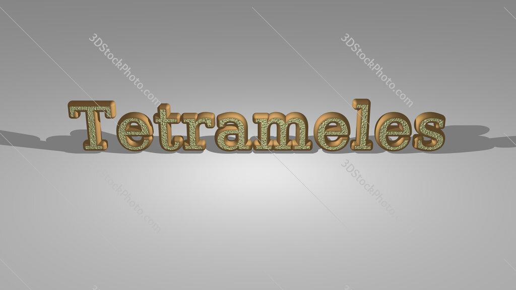 Tetrameles