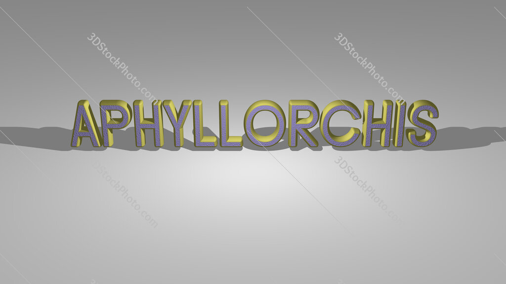 Aphyllorchis