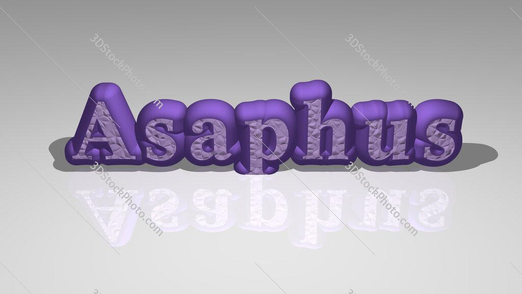 Asaphus