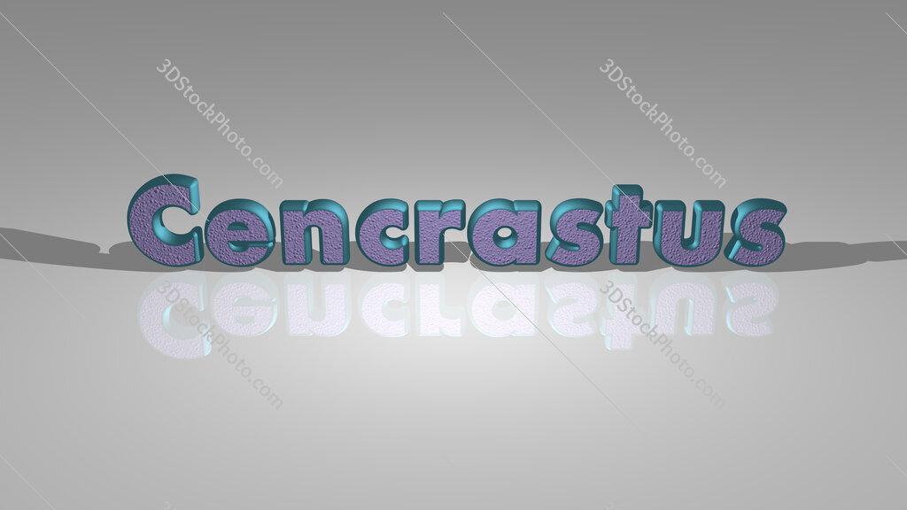 Cencrastus