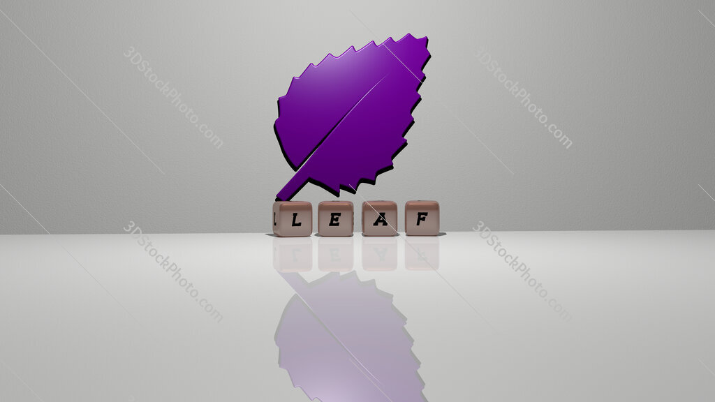 leaf text of cubic dice letters on the floor and 3D icon on the wall