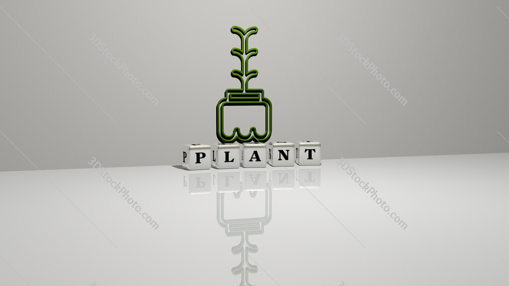 plant text of cubic dice letters on the floor and 3D icon on the wall