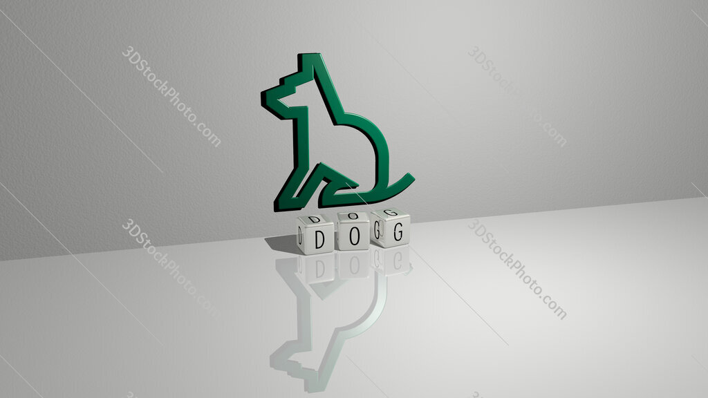 dog text of cubic dice letters on the floor and 3D icon on the wall