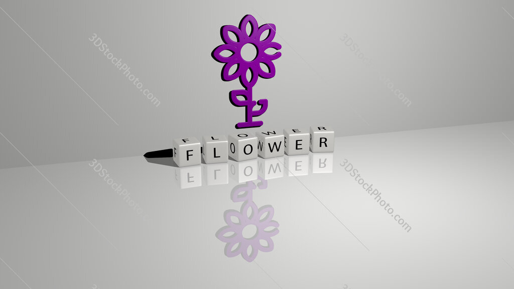 flower text of cubic dice letters on the floor and 3D icon on the wall