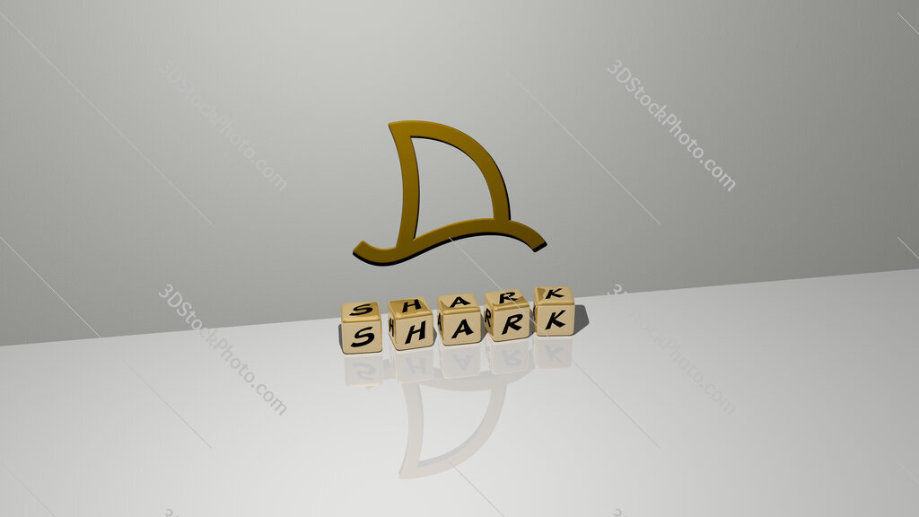 shark text of cubic dice letters on the floor and 3D icon on the wall