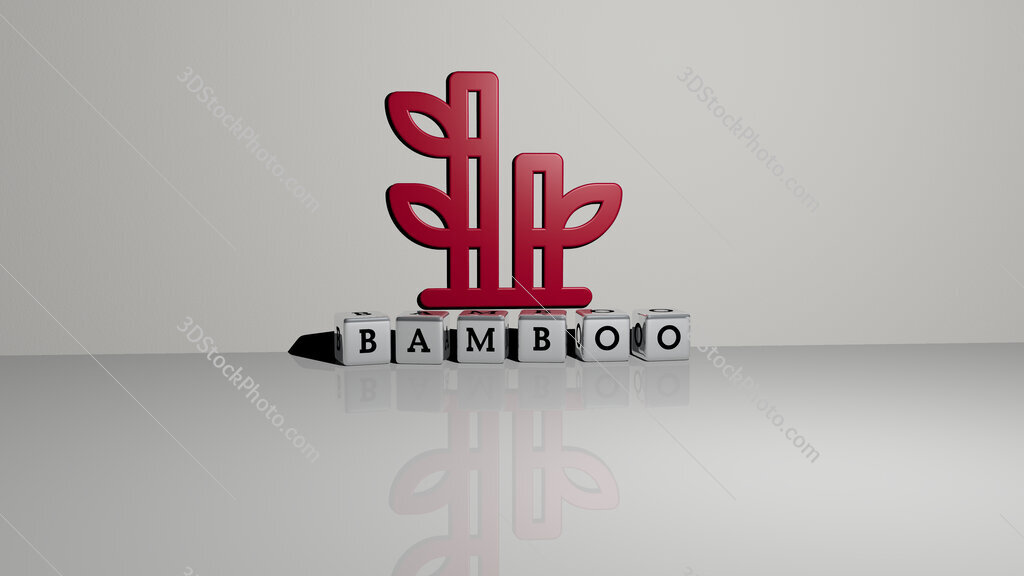 Bamboo text of cubic dice letters on the floor and 3D icon on the wall