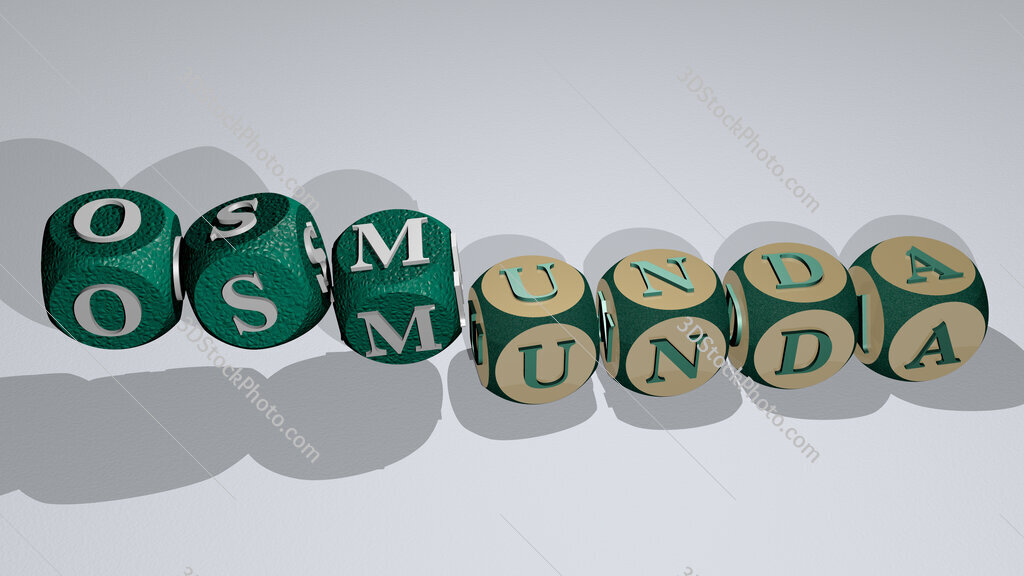 osmunda text by dancing dice letters