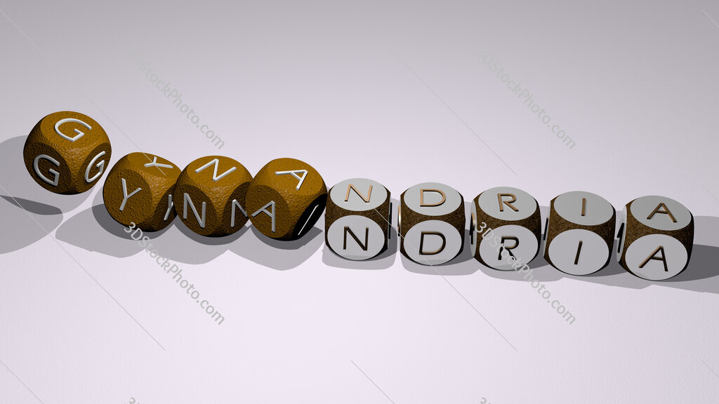 gynandria text by dancing dice letters