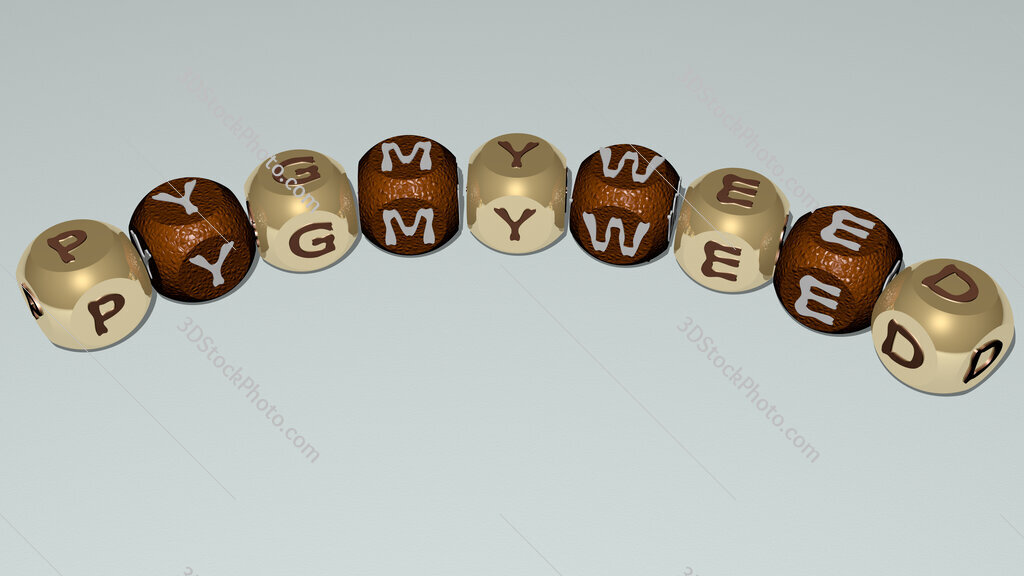 pygmyweed curved text of cubic dice letters