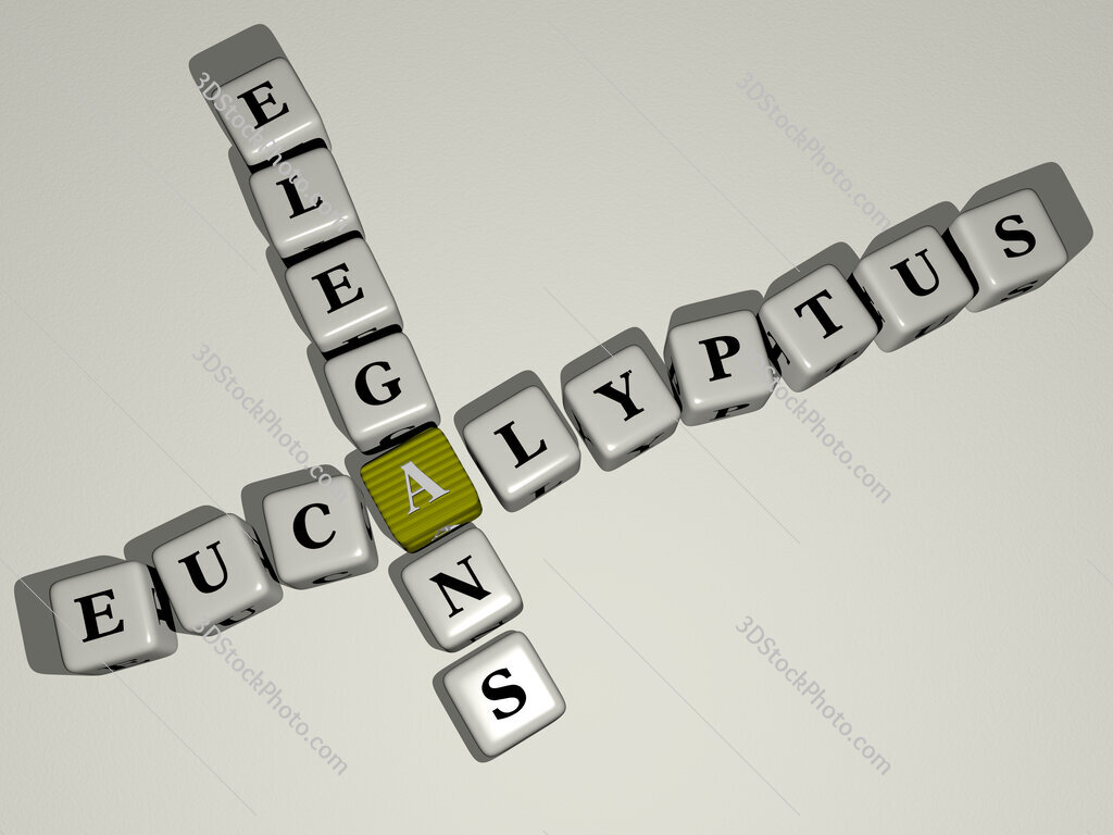 Eucalyptus elegans crossword by cubic dice letters