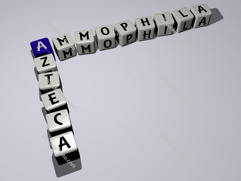 Ammophila azteca crossword by cubic dice letters
