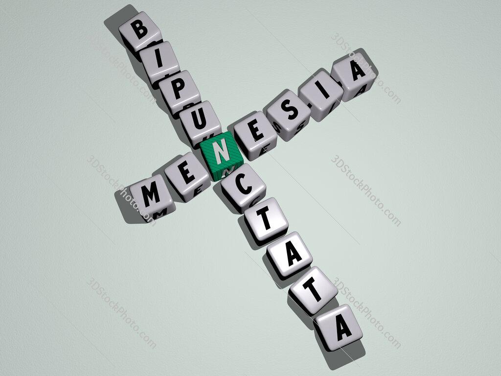 Menesia bipunctata crossword by cubic dice letters
