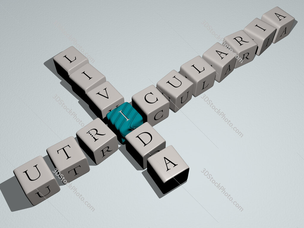 Utricularia livida crossword by cubic dice letters