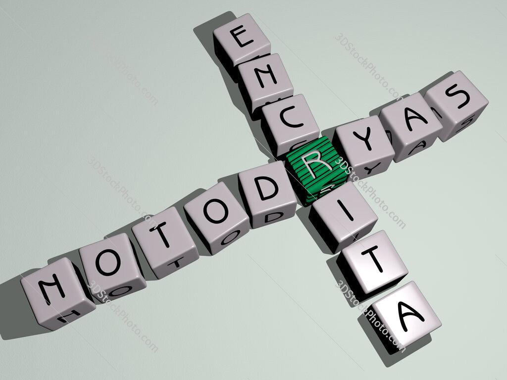 Notodryas encrita crossword by cubic dice letters
