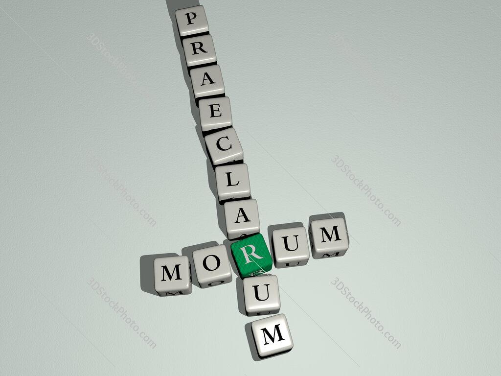 Morum praeclarum crossword by cubic dice letters