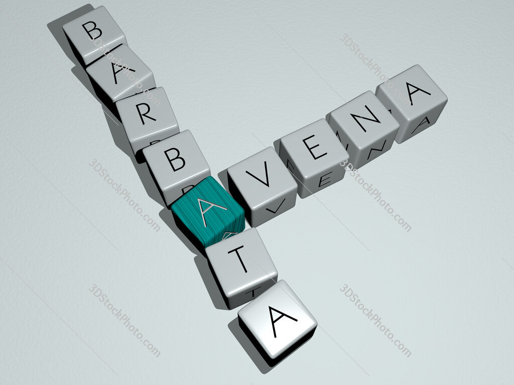 Avena barbata crossword by cubic dice letters