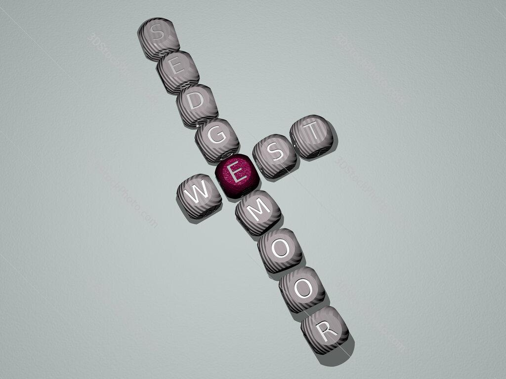 West Sedgemoor crossword of dice letters in color