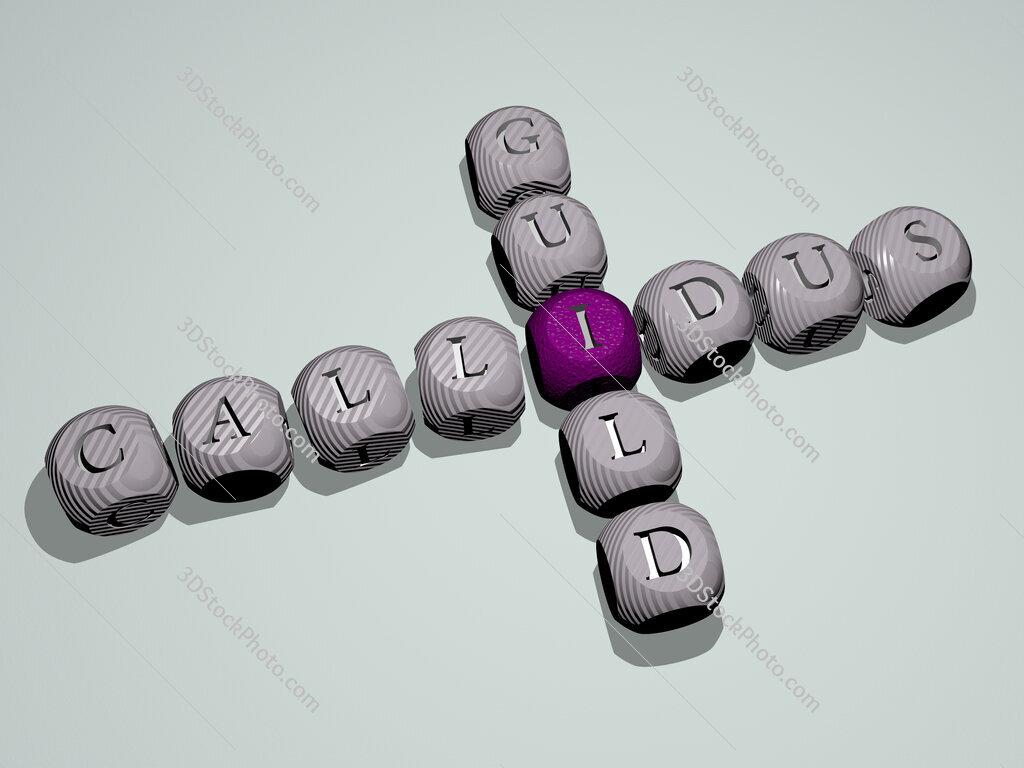 Callidus Guild crossword of dice letters in color