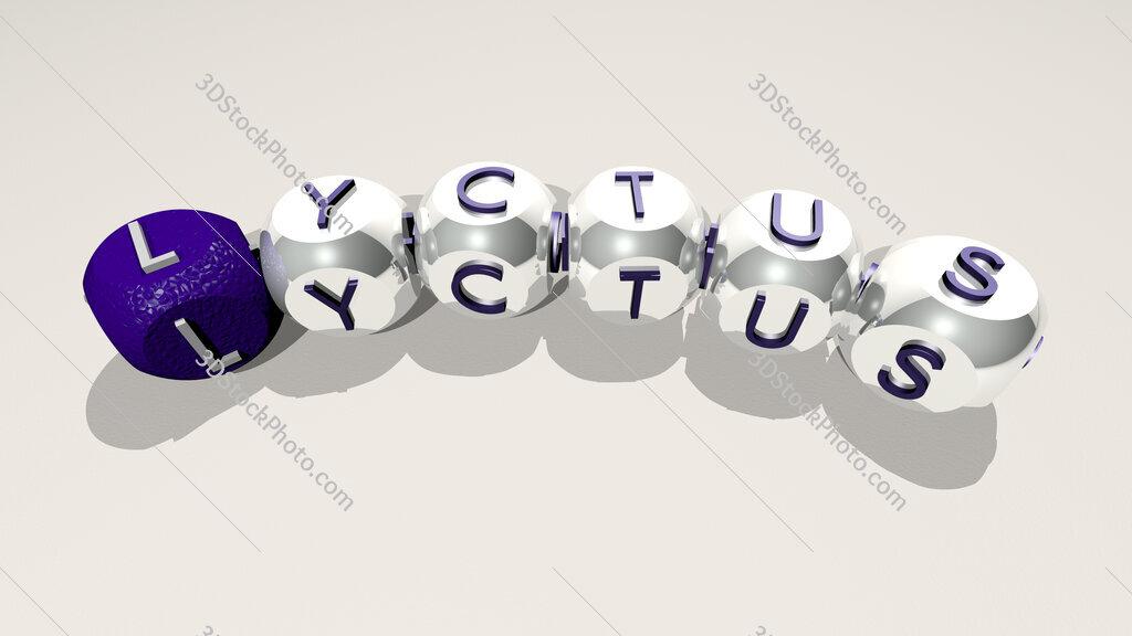 Lyctus