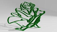 rose flower pencil drawing