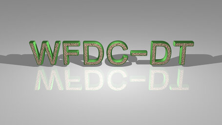 WFDC DT