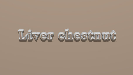 Liver chestnut