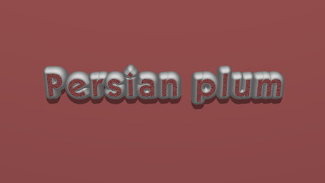 Persian plum