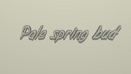 Pale spring bud