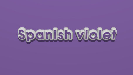 Spanish violet