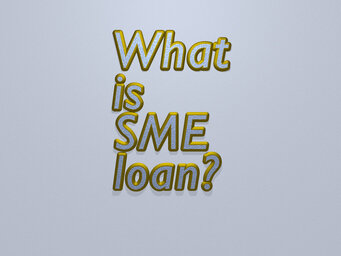 What is SME loan?