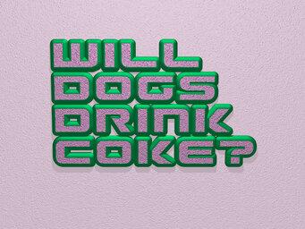 Will dogs drink Coke?