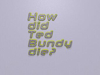 How did Ted Bundy die?