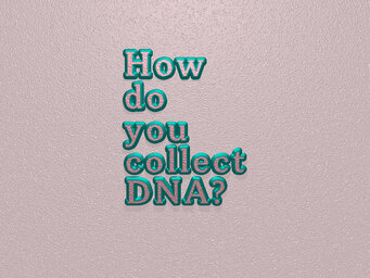 How do you collect DNA?