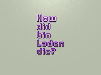How did bin Laden die?