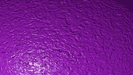 French violet