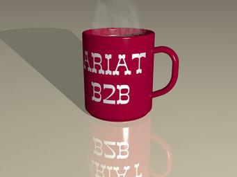 ariat b2b