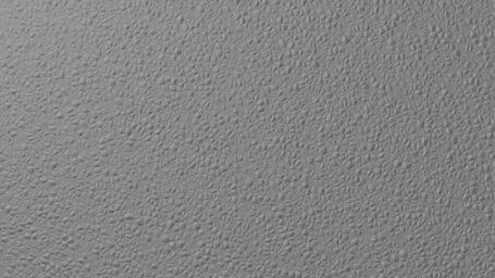 Dim gray