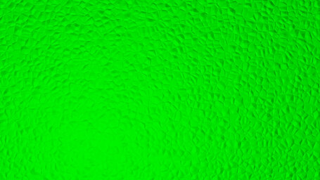 Lime (web) (X11 green)