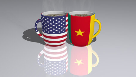 united states of america cameroon