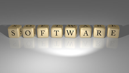 Who is India's No 1 software leading company?