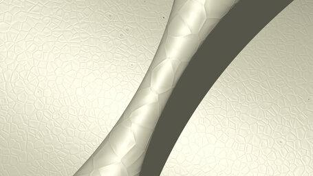 pale golden rod