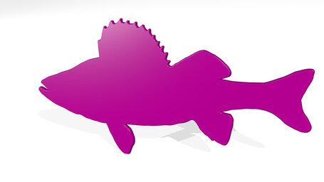 big fish barracuda