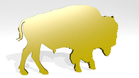 domestic animal cattle
